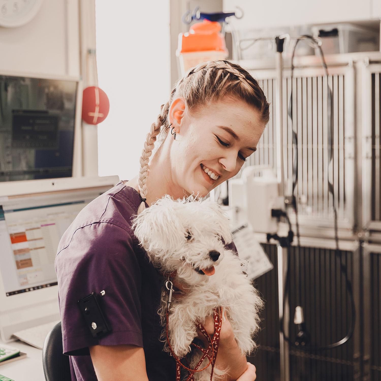 Eläinlääkäriasema Helmessä on myös päiväsairaala